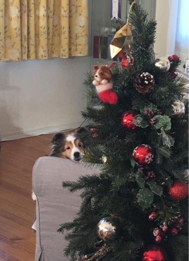 クリスマスと年末_f0126965_13475986.jpg
