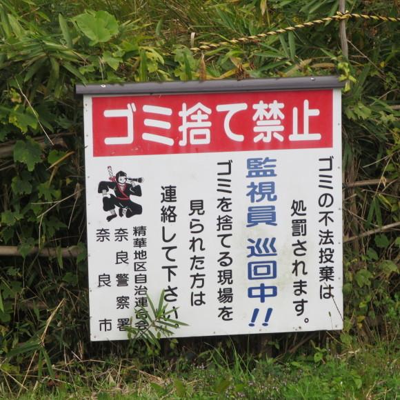 山の辺の道(北)を奈良から天理まで歩いた話3_c0001670_21252929.jpg