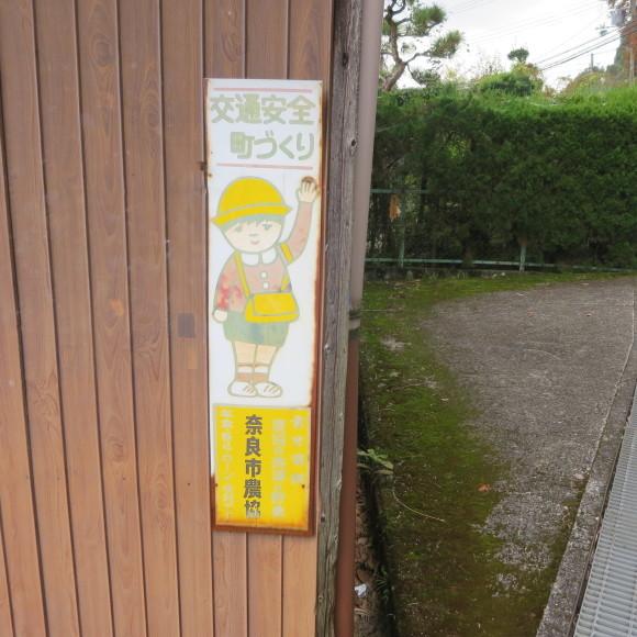 山の辺の道(北)を奈良から天理まで歩いた話3_c0001670_21264059.jpg