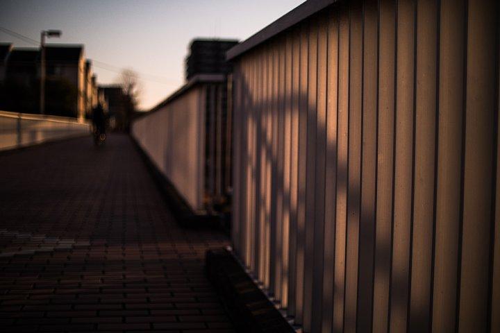 黄昏のペデストリアンデッキにまとわりつく光蜥蜴 (写真部門)_d0353489_22103573.jpg