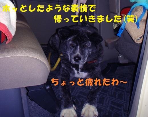 f0121712_22451912.jpg