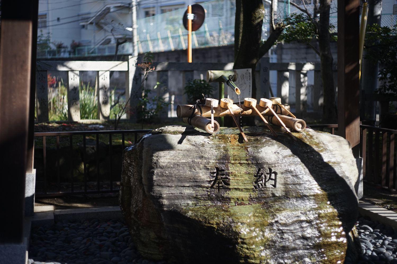 DRズミクロン50mmF2で 八坂神社へ_b0069128_1447887.jpg