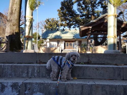 大きくなるな、自分に囚われるな 小川洋子「猫を抱いて象と泳ぐ」_e0016828_10284798.jpg