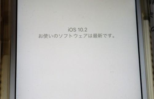 f0287038_314543.jpg