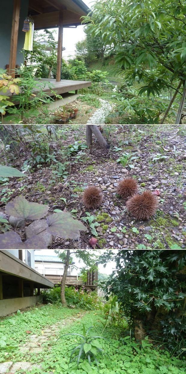 高尾の家☆味わいのあるお庭に_c0152341_2340786.jpg
