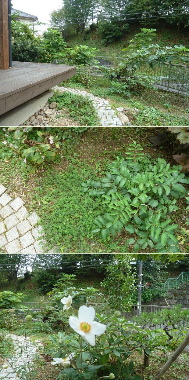 高尾の家☆味わいのあるお庭に_c0152341_23412782.jpg