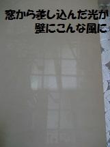 d0017084_9514595.jpg