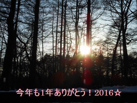 d0085018_2031151.jpg