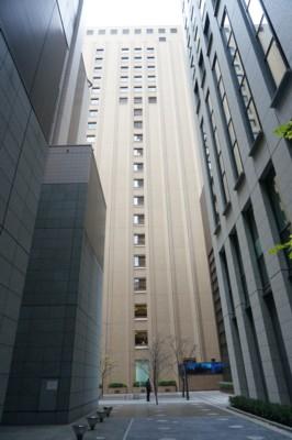 高層ビル街の坪庭_f0055131_8462595.jpg