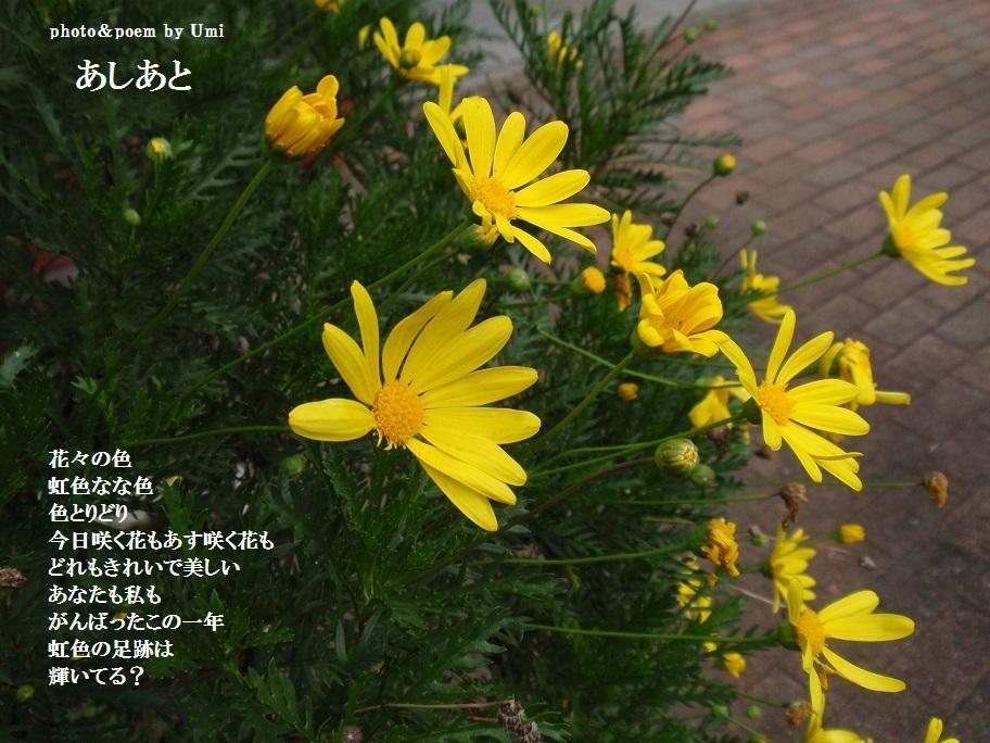 f0351844_16262162.jpg