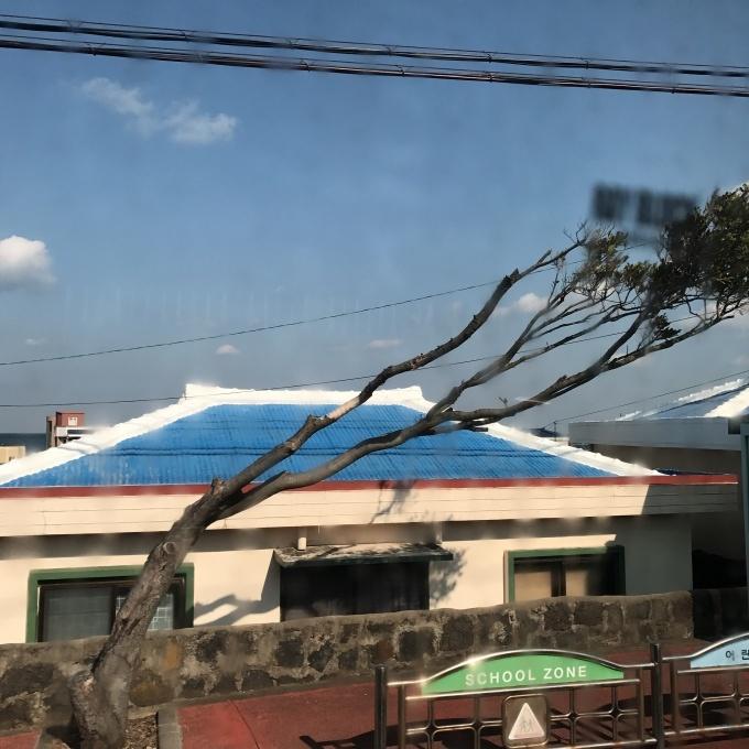 済州島2日目_d0160145_17563947.jpg
