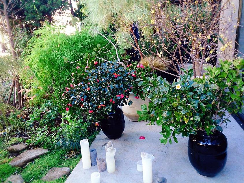 素敵な正月飾りでハッピーに♪_b0060363_123574.jpg