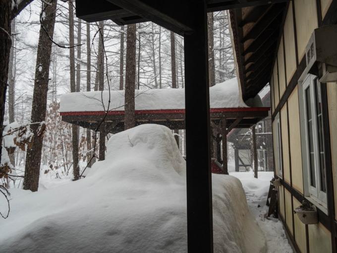昼間の激しい吹雪・・今年は本当に雪が多いですね!_f0276498_21215861.jpg