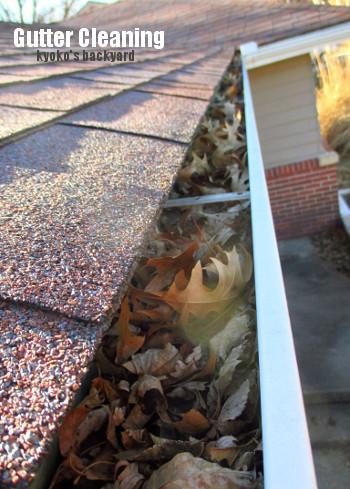 12月恒例の雨樋の掃除と、落ち葉よけネットの取り付け_b0253205_06305609.jpg