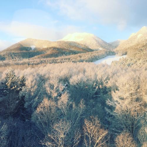 富良野スキー場⭐︎ファーストトラック!_c0151965_15113465.jpg