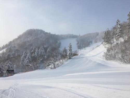 富良野スキー場⭐︎ファーストトラック!_c0151965_15113510.jpg