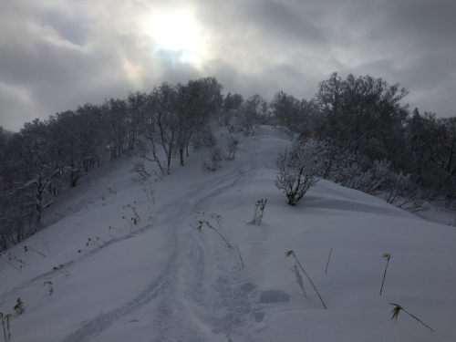 富良野スキー場⭐︎秘密のポイント_c0151965_15301255.jpg