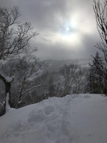 富良野スキー場⭐︎秘密のポイント_c0151965_15301369.jpg