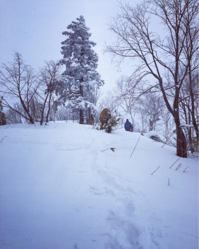 富良野スキー場⭐︎秘密のポイント_c0151965_15301434.jpg