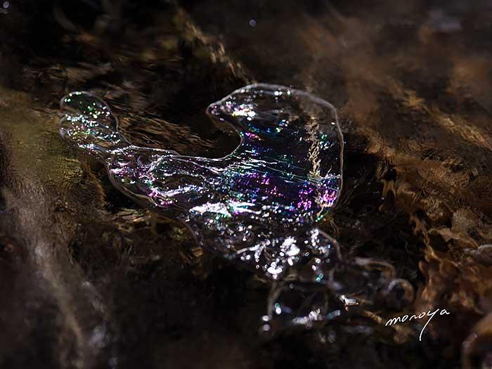 薄氷キラキラ_c0085877_6461897.jpg