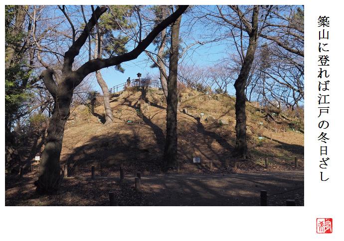 新宿区の箱根山に登る_a0248481_21373053.jpg