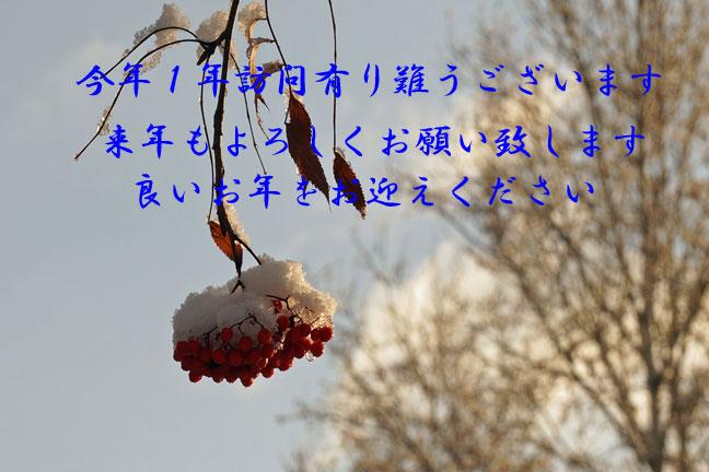 年末_d0162994_8255364.jpg