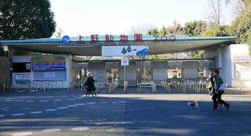 上野公園(ラスコー展)へ_c0090198_18355753.jpg