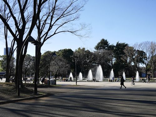 上野公園(ラスコー展)へ_c0090198_18365748.jpg
