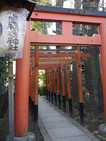 上野公園(ラスコー展)へ_c0090198_1850858.jpg