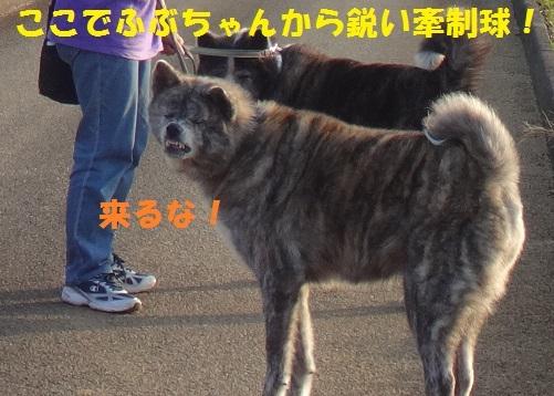 f0121712_00192617.jpg