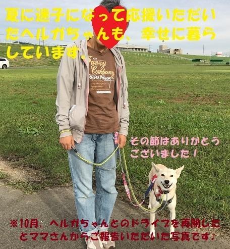 f0121712_13295568.jpg