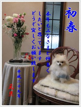 b0167519_23504156.jpg