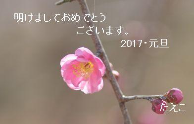 e0098241_20175758.jpg