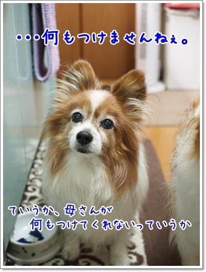 d0013149_00142293.jpg