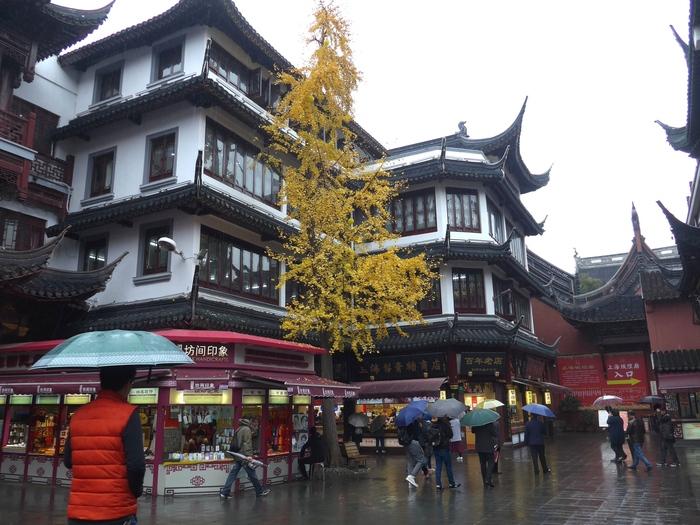 上海出張へ行く④ ~南翔饅頭店の小籠包~_f0232060_023332.jpg