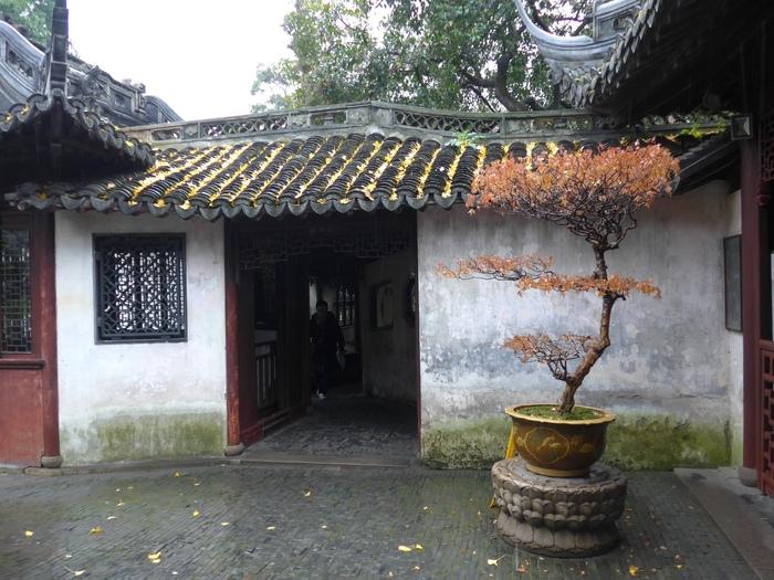 上海出張へ行く④ ~南翔饅頭店の小籠包~_f0232060_073535.jpg