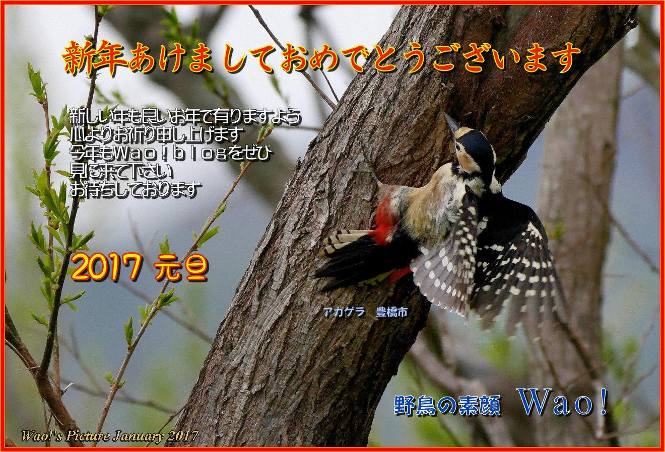 c0198669_21484243.jpg