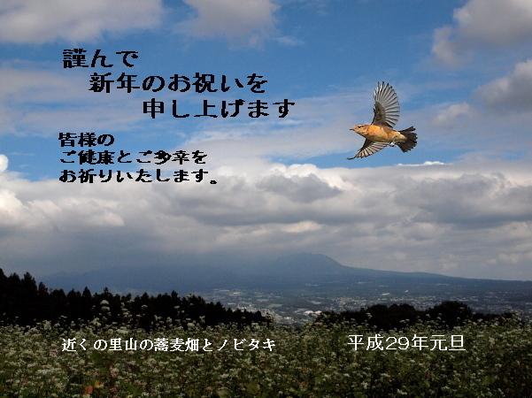 d0334291_17100155.jpg