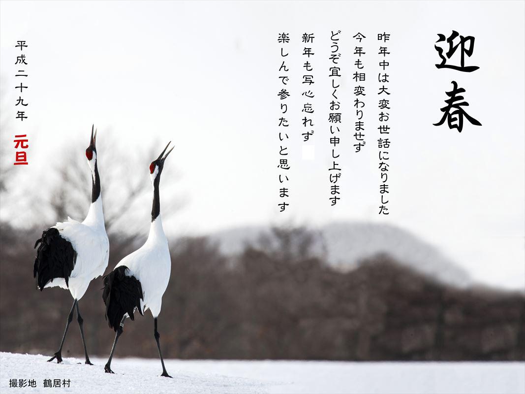 新年のご挨拶_b0074098_7231592.jpg