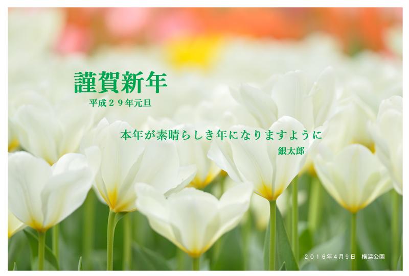 f0233999_21215684.jpg