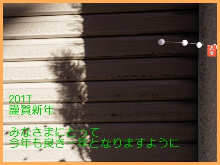 b0148920_18265341.jpg