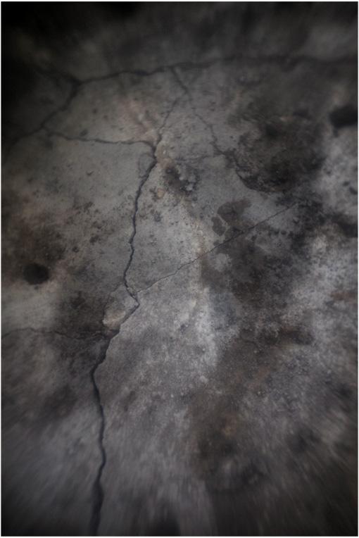 b0226423_17261053.jpg
