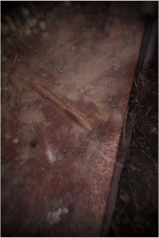 b0226423_1726436.jpg