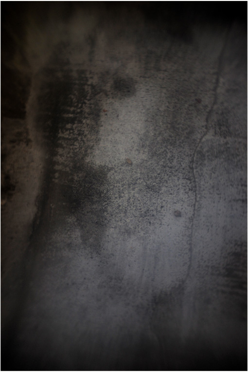 b0226423_17322581.jpg