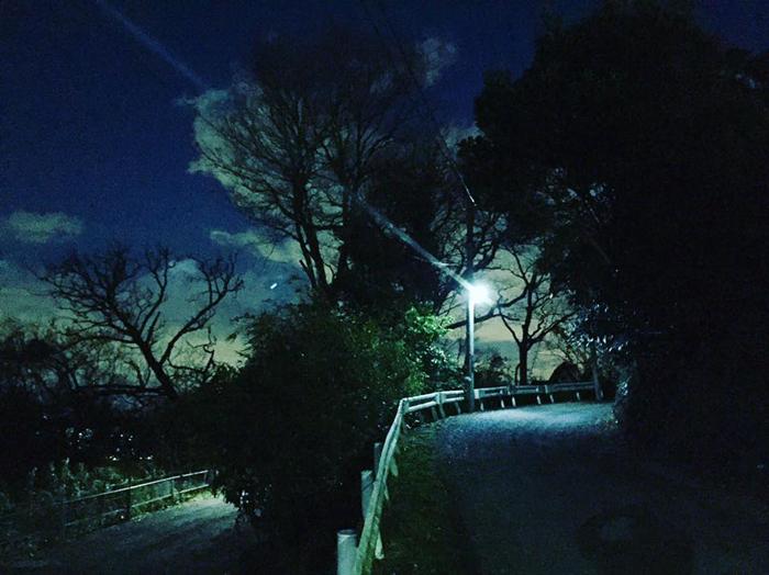 鎌倉市鎌倉山 / iPhone 6_c0334533_19471747.jpg