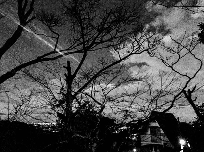 鎌倉市鎌倉山 / iPhone 6_c0334533_19474723.jpg