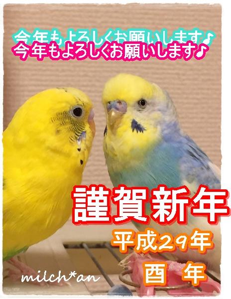 b0115642_1903138.jpg