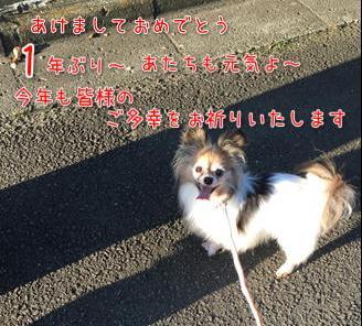 d0139352_16541497.jpg