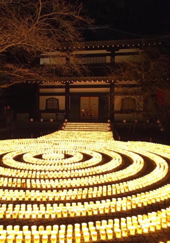 鎌倉心景「春へ」_a0135581_09051322.jpg