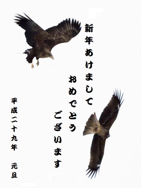 f0060584_011775.jpg